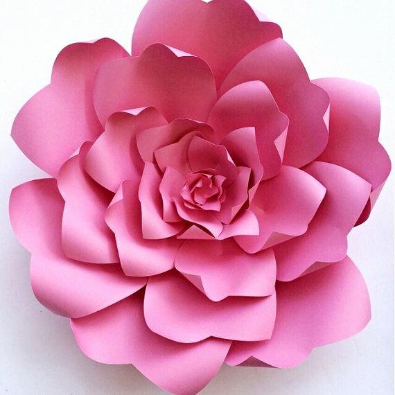Paper Flower Tutorial Paper Flower Backdrop Paper Flower