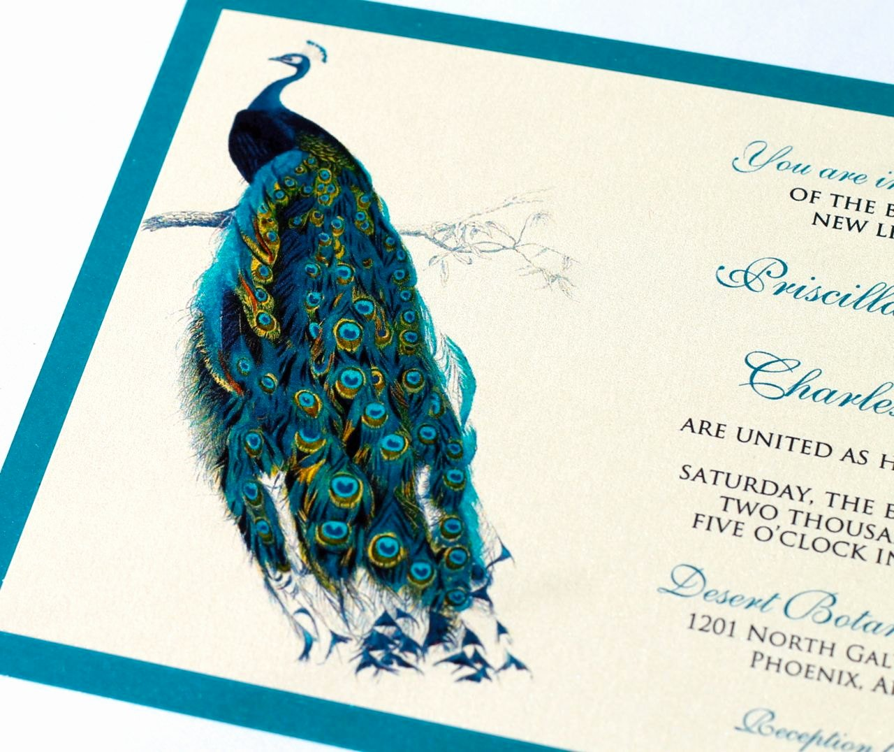 Peacock Wedding Invitations for Ucwords] – Card Design Ideas