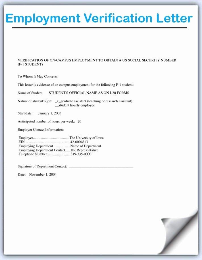 Perm Employment Verification Letter Letter Of Re Mendation