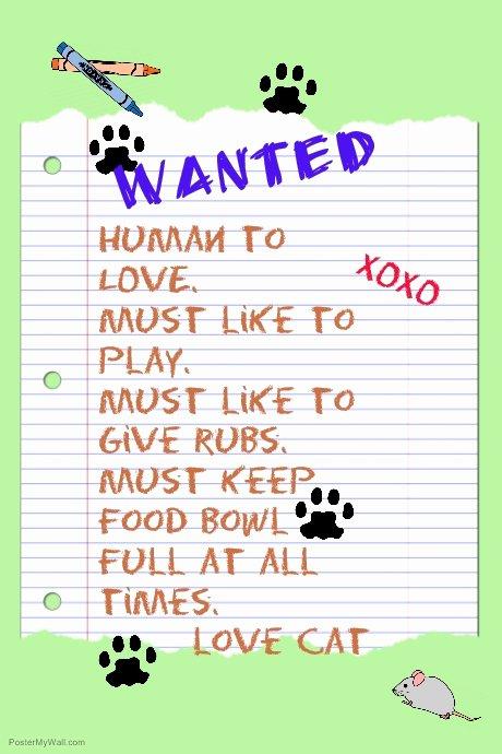 pet adoption poster template