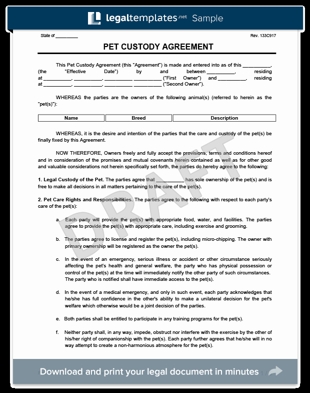 Pet Custody Agreement