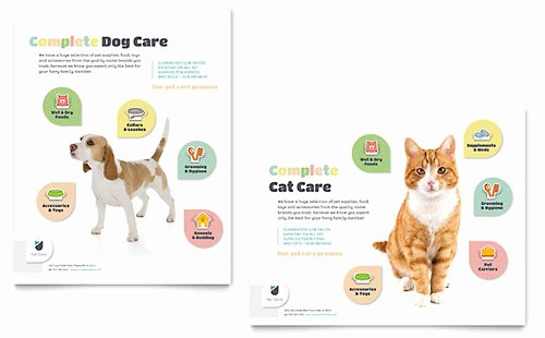 Pet Store Brochure Template Design