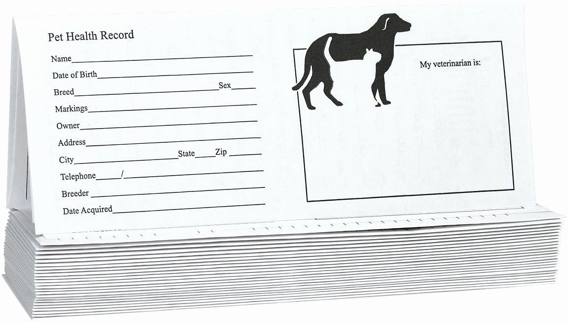 Pet Vaccination Record Template Canine Printable Dog