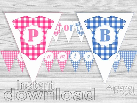Pink or Blue Baby Shower Banner Gender Reveal Banner Printable