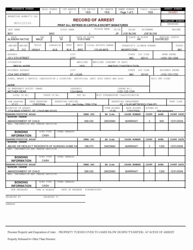 Police Report Example