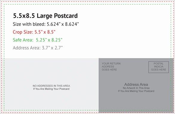 Postcard Template 47 Free Printable Word Excel Pdf
