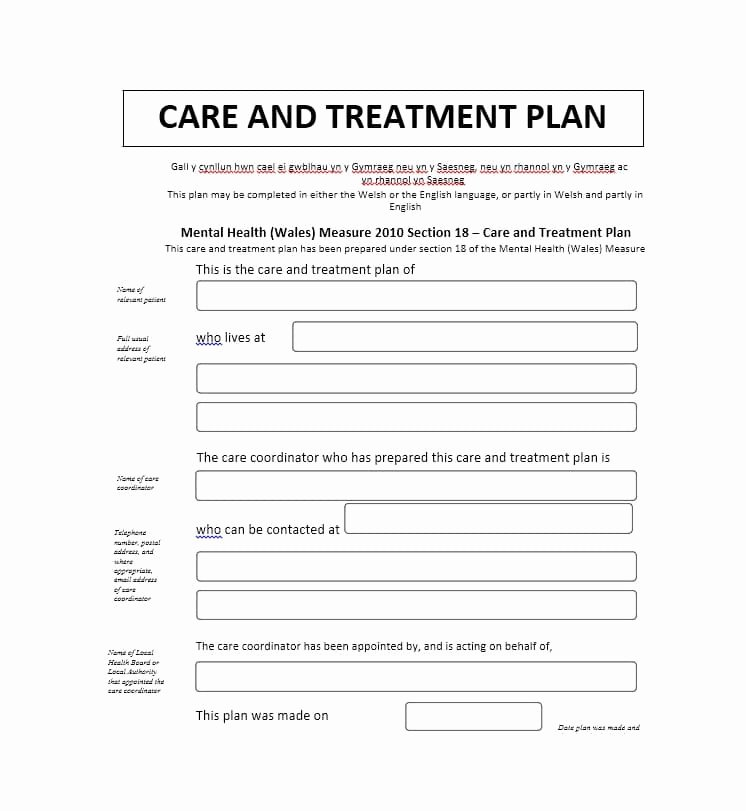 Pretty Mental Health Treatment Plan Template S