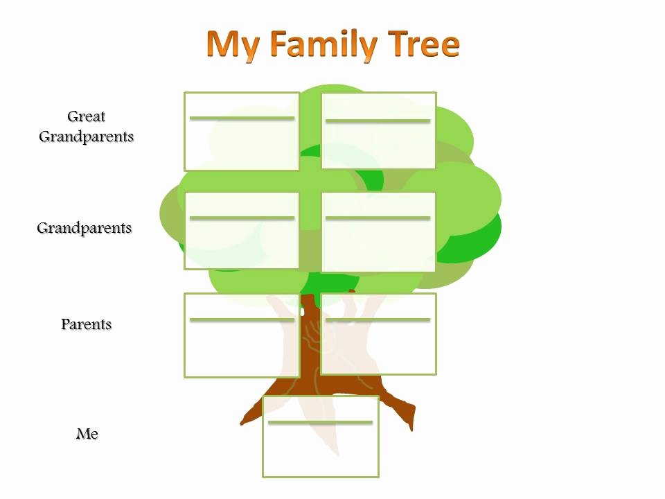 Primary Ks2 Family Tree Template