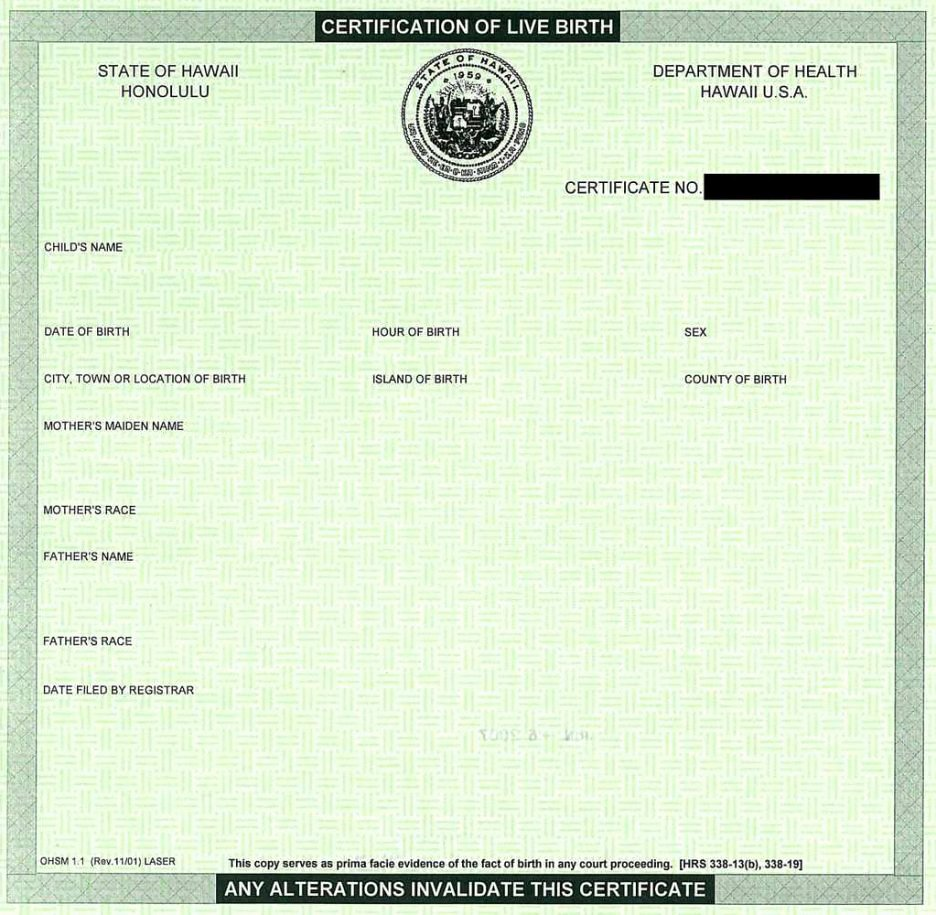 Printable Pet Rock Birth Certificates Trials Ireland