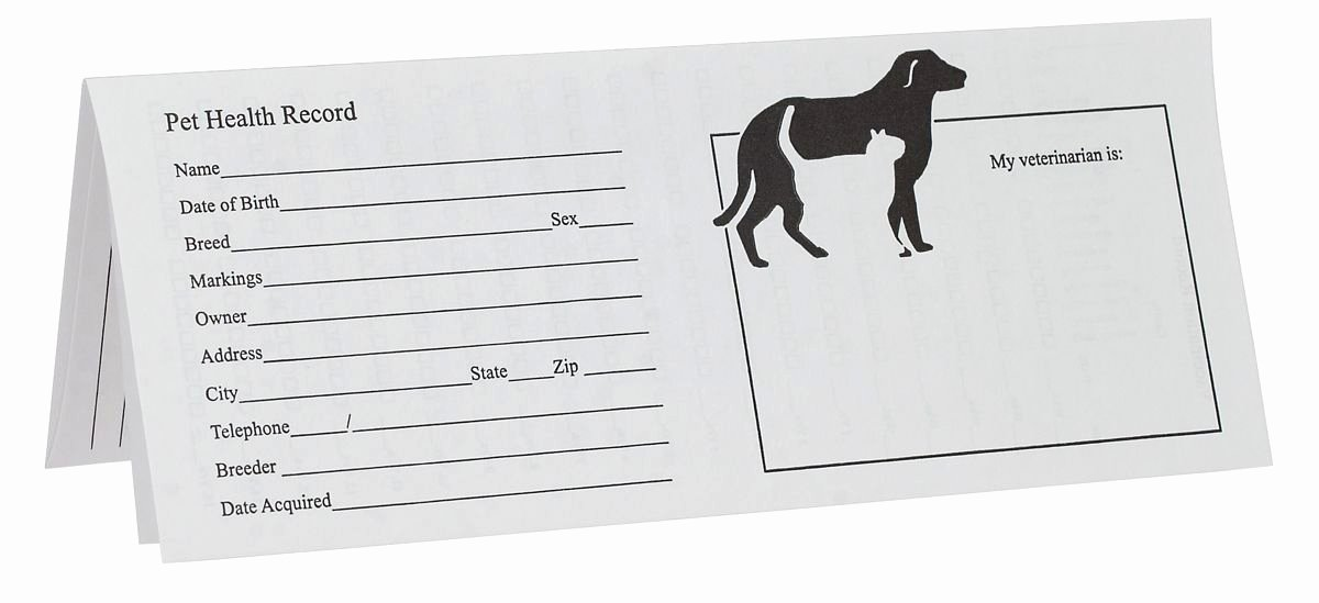 Printable Puppy Shot Records