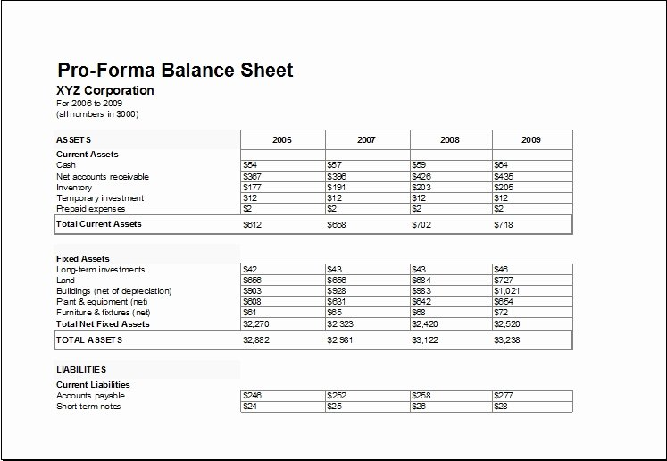 Pro forma Financial Statements Template Excel Invitation