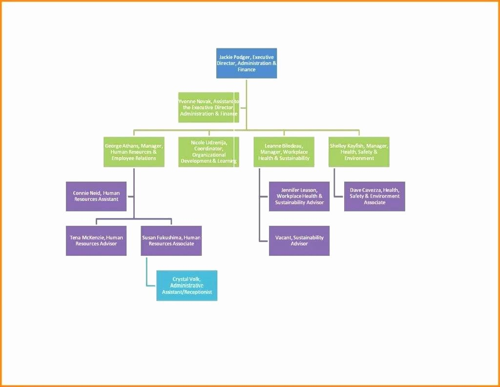Process Flow Chart Template In Word Sample Charts