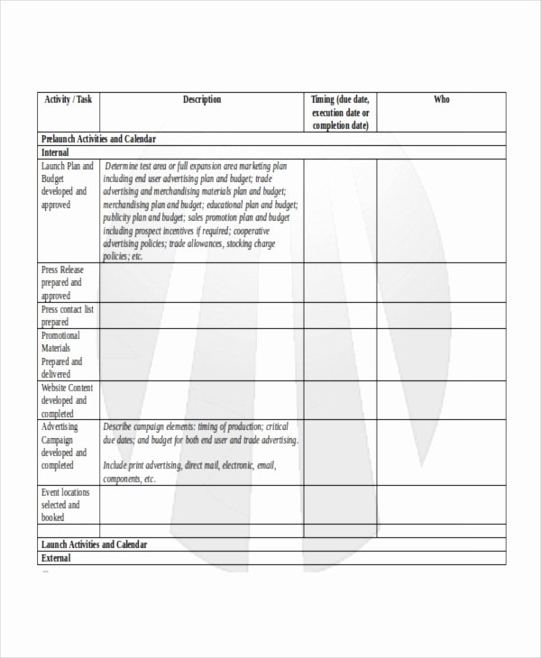 Product Launch Plan Template 8 Free Word Pdf Document