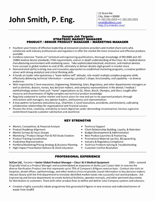 Product Manager Resume Sample & Template