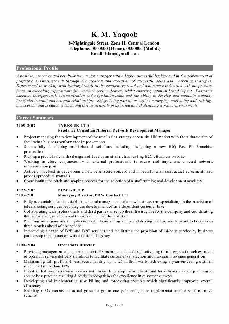 Professional Cv Sample