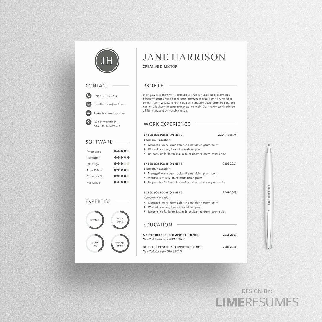 Professional Cv Template Matching Cover Letter
