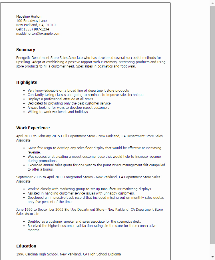 Professional Department Store Sales associate Templates to