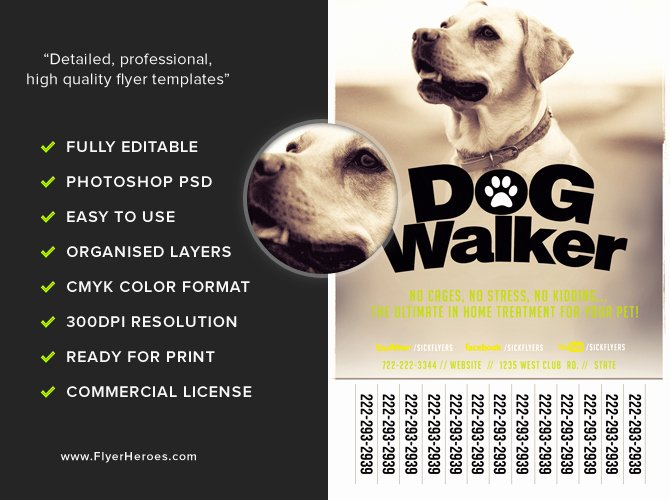 Professional Dog Walker Flyer Template Flyerheroes