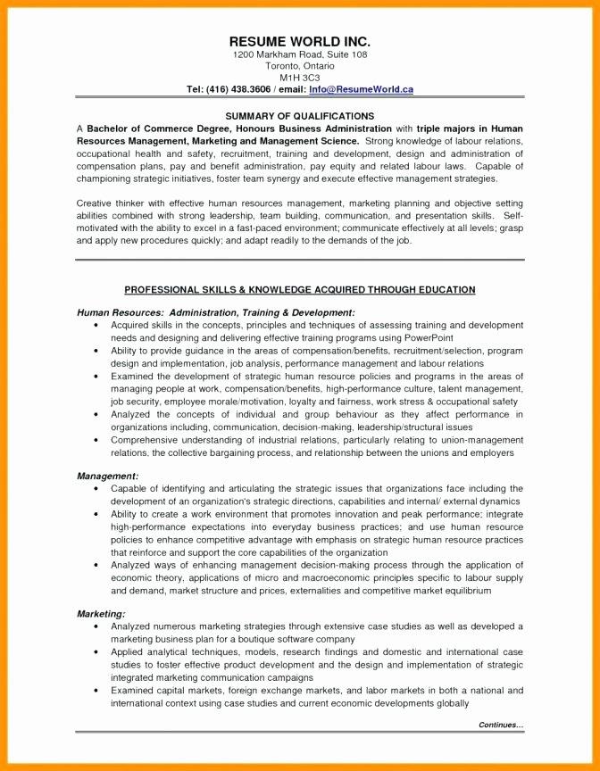 Professional Employee Pensation Plan Template Senior