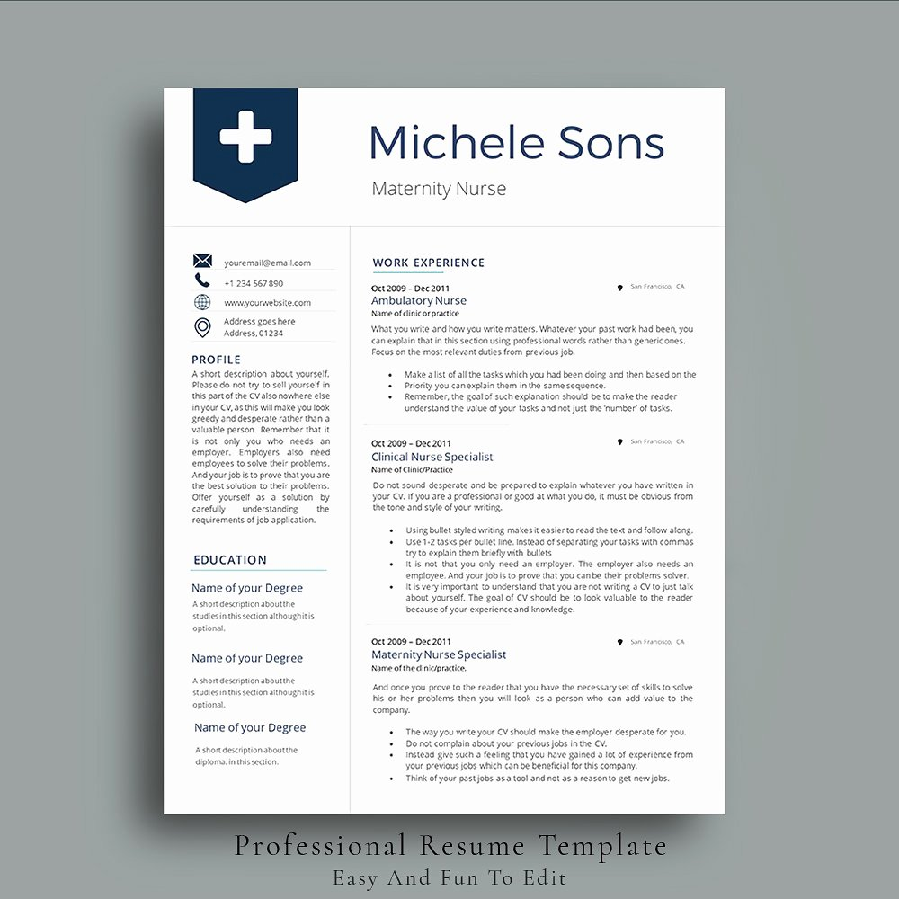 Professional Nurse Resume Template Resume Templates