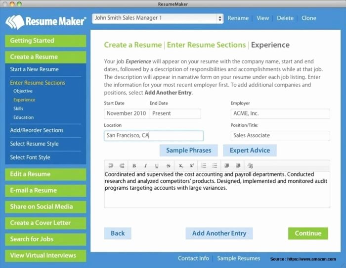 professional resume format pdf