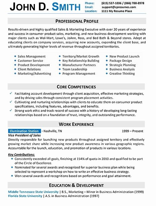 Professional Resume format for It Professionals Best