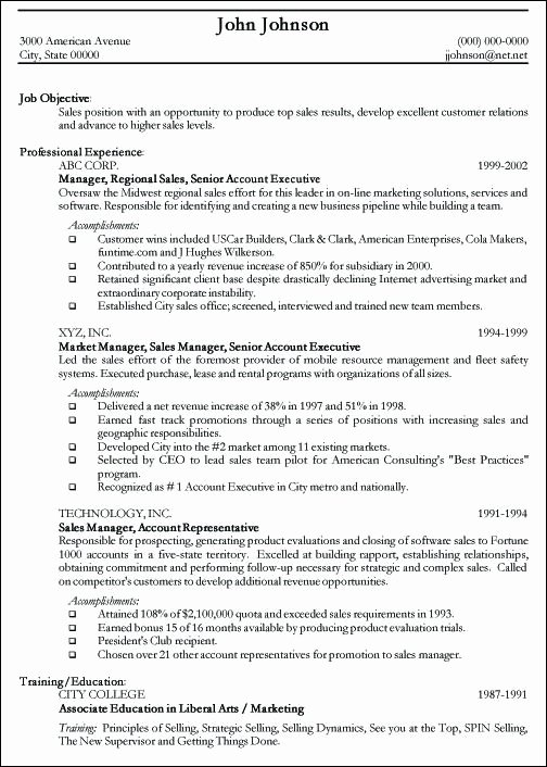 Professional Resume Sample Free Sample Curriculum Vitae