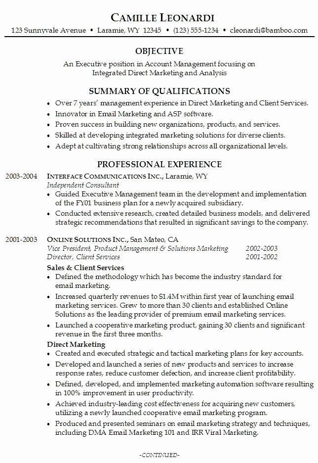 Professional Resume Summary 2016 Samplebusinessresume