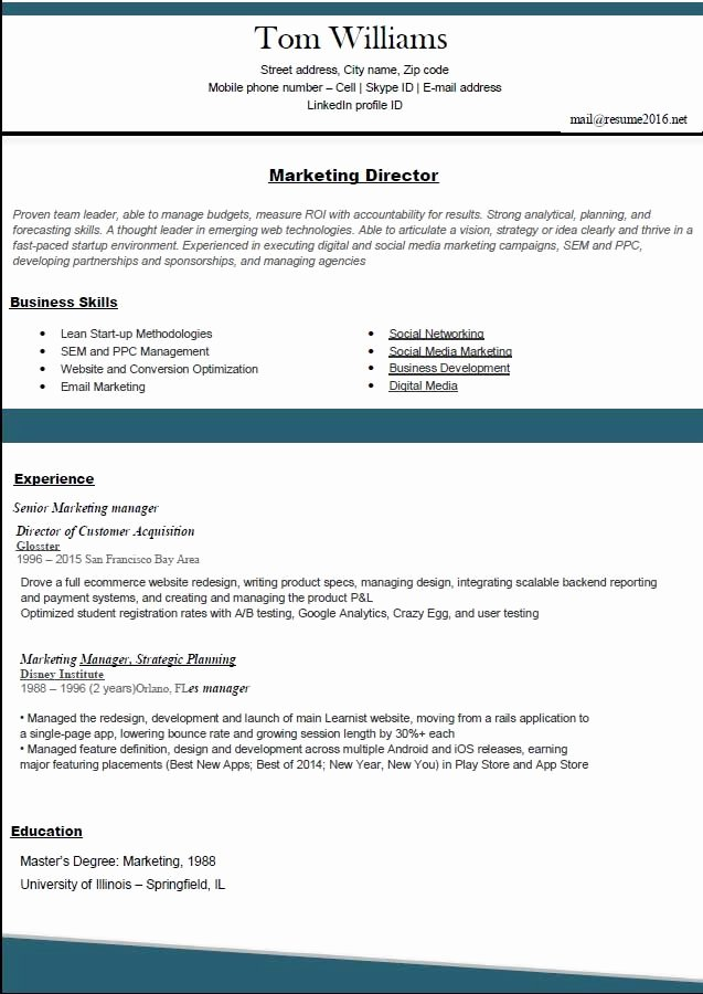 Professional Resume Template 2016