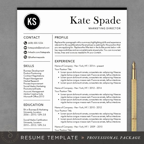 Professional Resume Template Cv Template Mac or Pc for