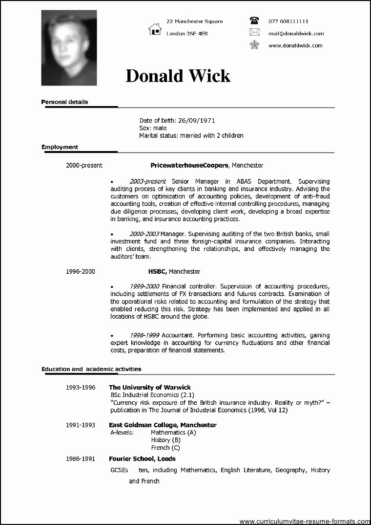 Professional Resume Template Doc Free Samples Examples
