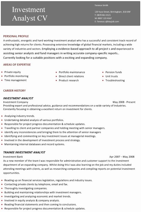 Professional Resume Template Examples