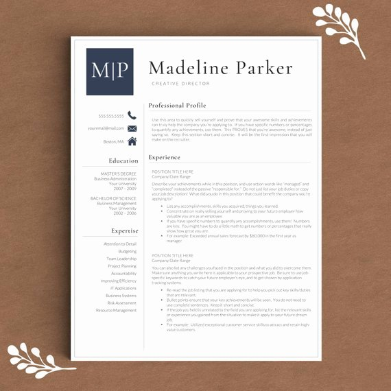 Professional Resume Template for Word & Pages by