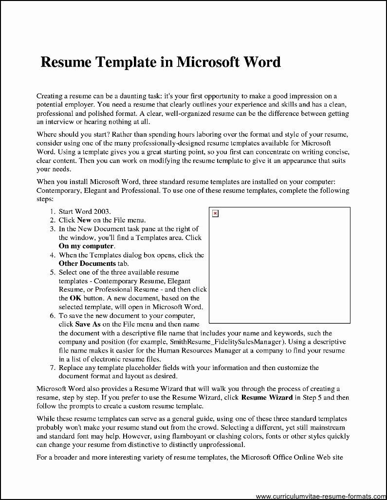 Professional Resume Template Microsoft Word 2007 Free
