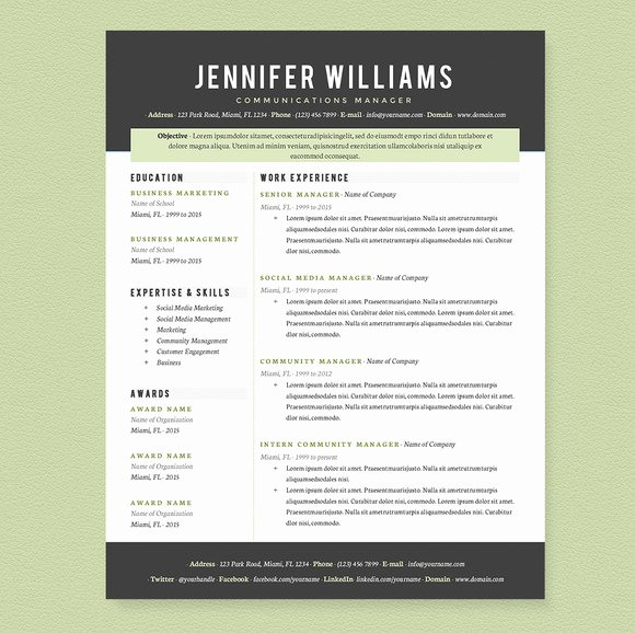 Professional Resume Template Pkg Resume Templates On
