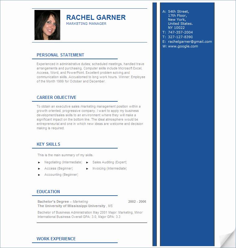 Professional Resume Template Resume Cv
