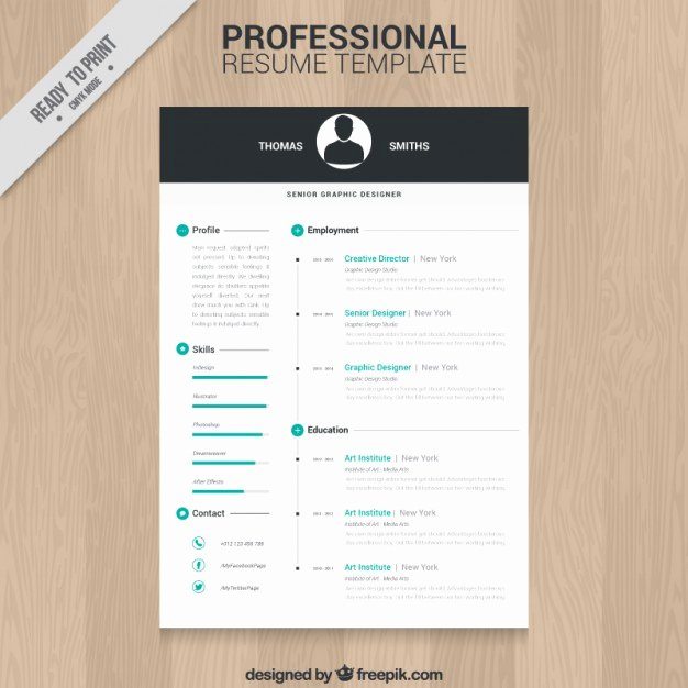 Professional Resume Template Vector