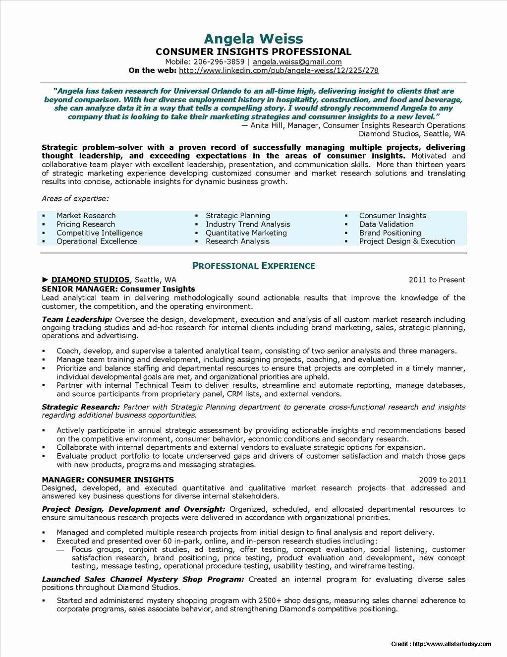 Professional Resume Writing Service Chicago Resume