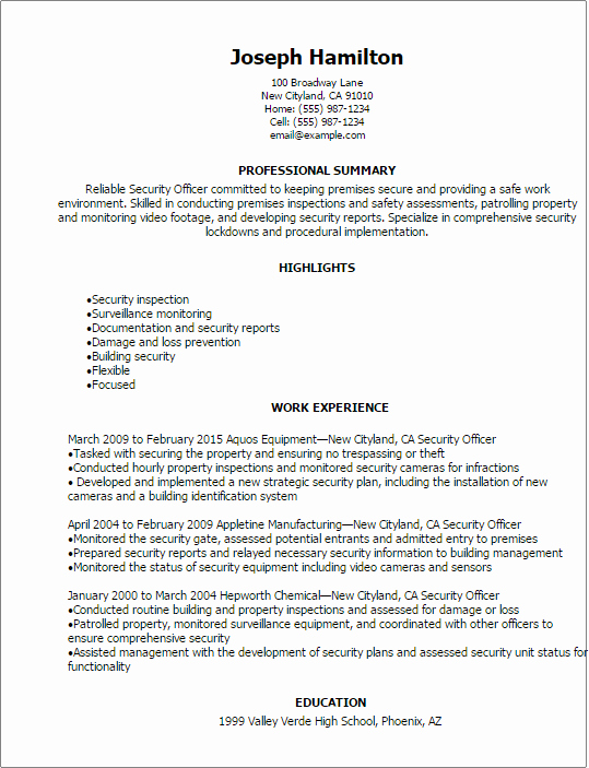 Professional Security Ficer Resume Templates to Showcase