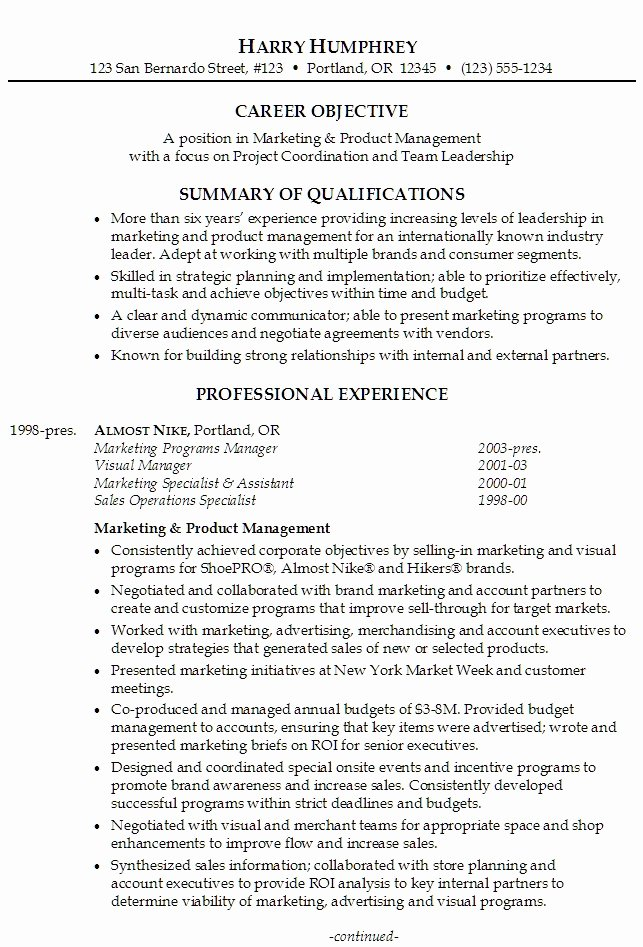 Professional Summary Resume Examples F Resume