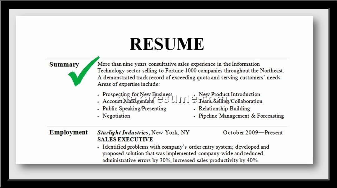 professional summary on resume 1950