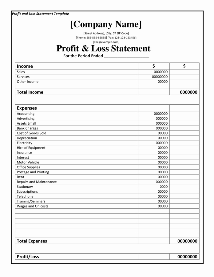 Profit and Loss Statement Template