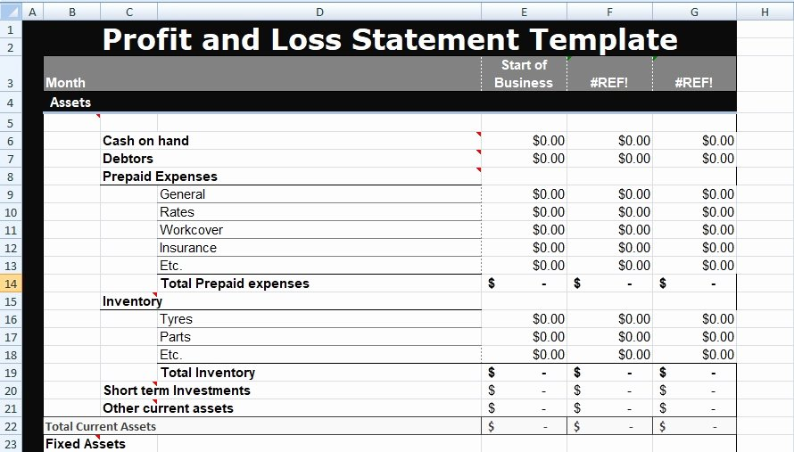 Profit and Loss Statement Template Xls