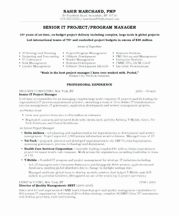 Program Management Resume – orlandomoving