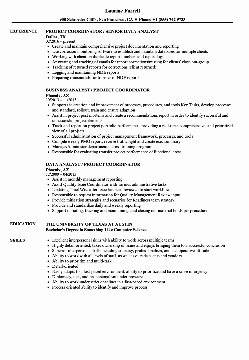 Project Coordinator Analyst Resume Samples