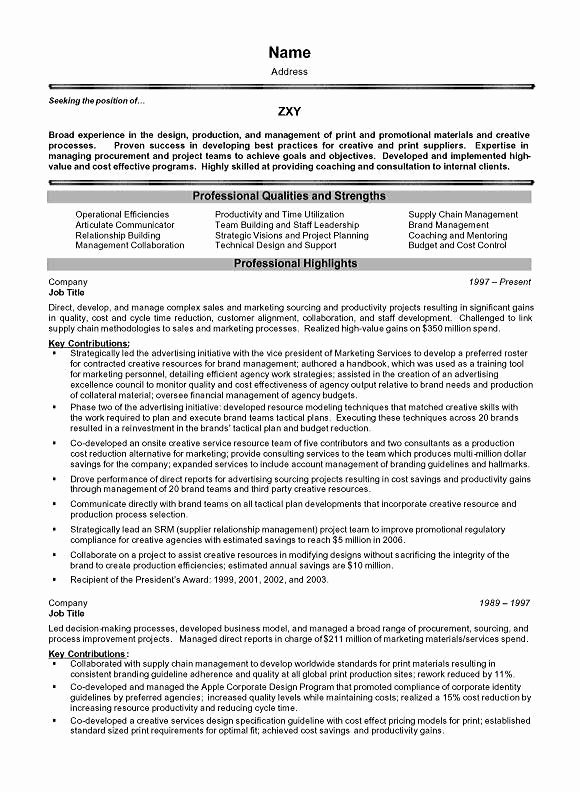 Project Management Executive Resume Example
