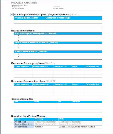 Project Management Project Charter Sample 1