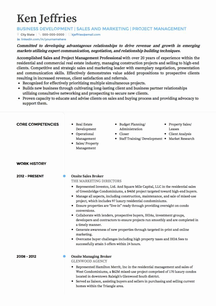 Project Manager Cv Examples & Templates