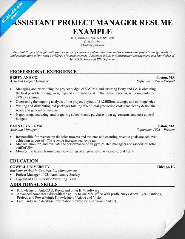 Project Manager Resume Resume Panion Samples Sample