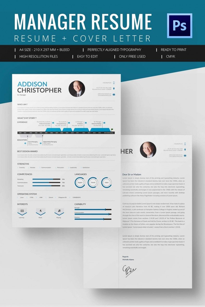 Project Manager Resume Template 10 Free Word Excel